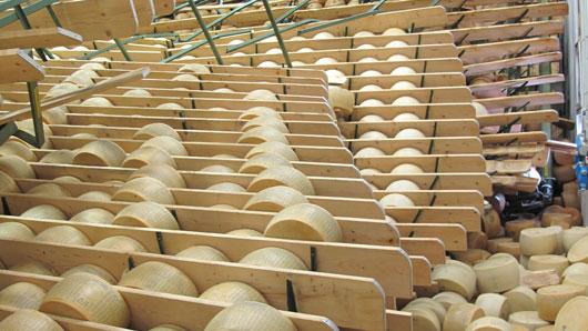 Scaffali caduti Parmigiano terremoto